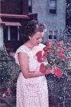 Barbara Mead and her roses 001