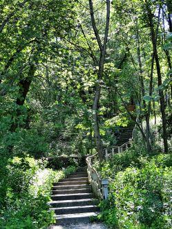 Westwood Hills 132