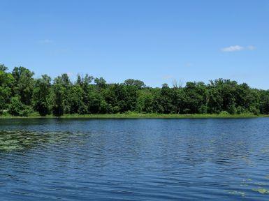Murphy-Hanrehan Park Reserve 244