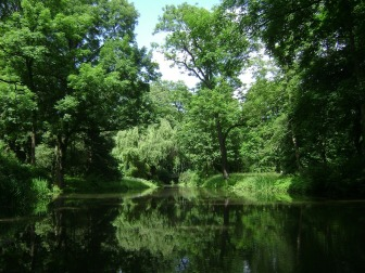 Pond for picnic
