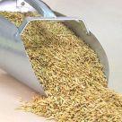 scoop of oats