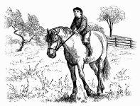 Boy_on_a_Horse