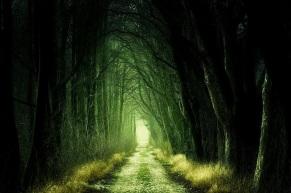 Wide avenue