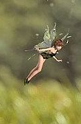 Fairy folk flitting