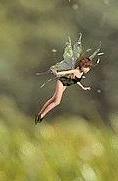 Fairy folk flitting