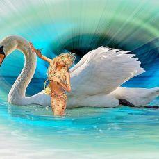 swan and mermaid
