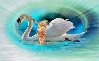 swan and mermaid