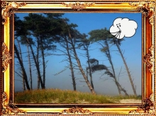 Wind blowing - framed