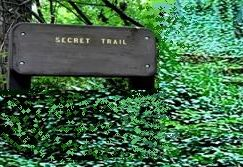 the secret trail