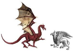 Dragon and Griffon