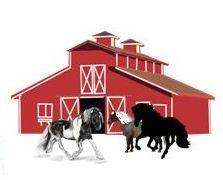 Horses by barn