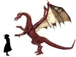 Marisol meets Dragon