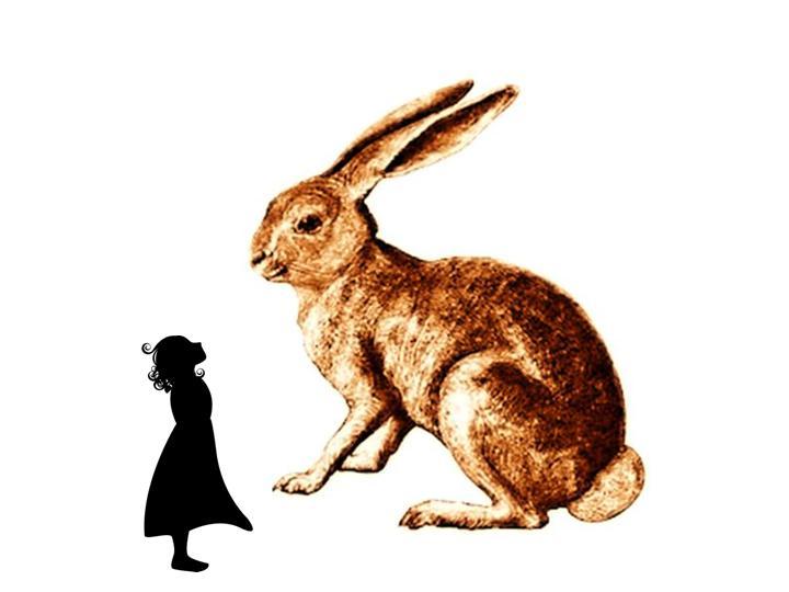 Marisol and rabbit